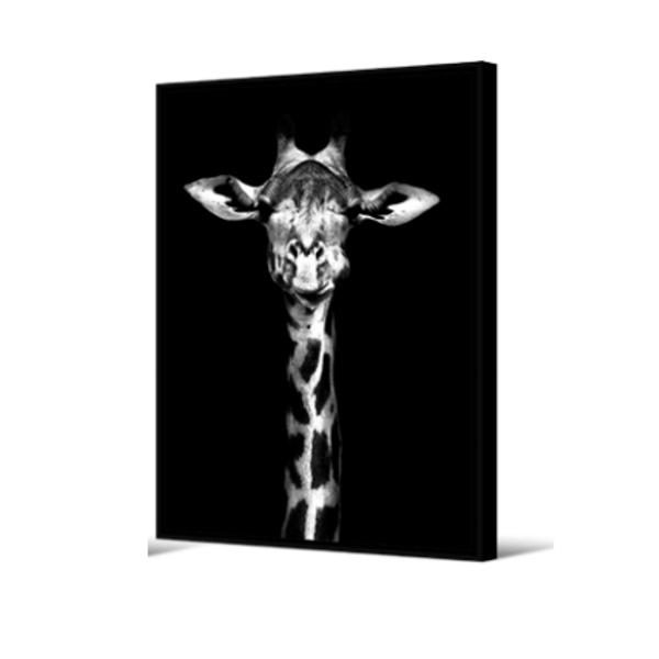 Cadre girafe