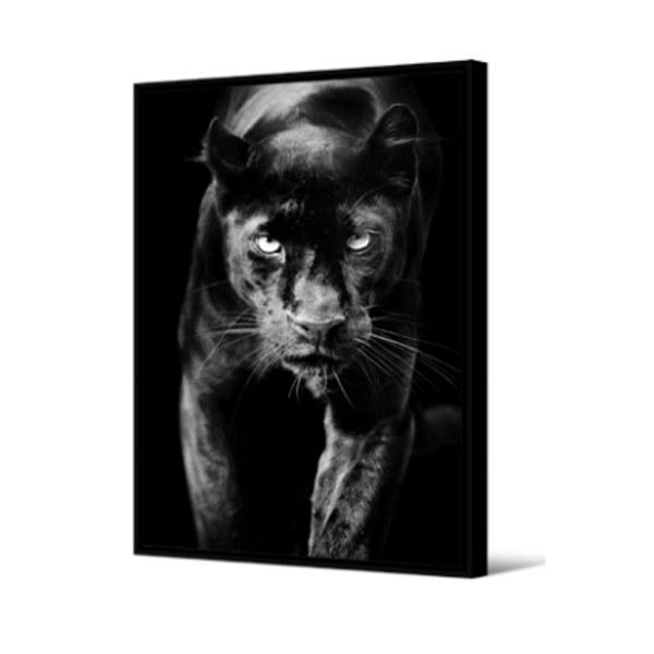 Cadre panthère noire