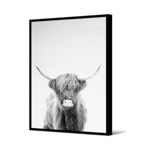 Cadre vache 2