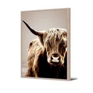 cadre vache sépia 2
